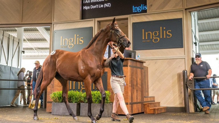 The Coolmore-consigned I Am Invincible filly sells to Sheamus Mills for A$1.95m at the Inglis Easter Sale