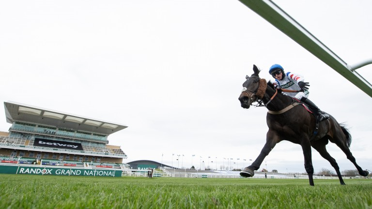 On his own: Clan Des Obeaux is in splendid isolation crosses the line in the Betway Bowl