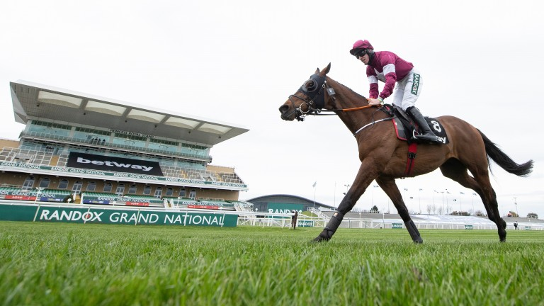Tiger Roll: entered for next week's Tote Galway Plate