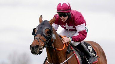 LIVERPOOL, ENGLAND - APRIL 08: Jack Kennedy riding Tiger Roll at Aintree Racecourse on April 08, 2021 in Liverpool, England. Sporting venues around the UK remain under restrictions due to the Coronavirus Pandemic. Only owners are allowed to attend the mee