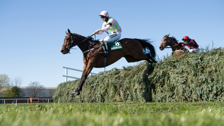 Livelovelaugh and Patrick Mullins clear the final fence ahead of Pink Eyed Pedro