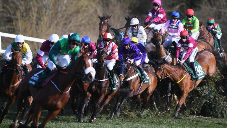 The Grand National: 40 runners and riders will take part in Saturday's big race at 5.15pm