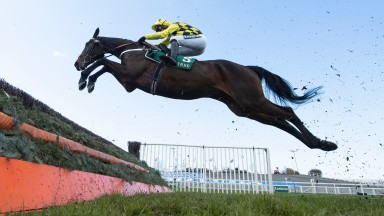 Shishkin and Nico de Boinville fly over a fence in the Maghull Novices' Chase