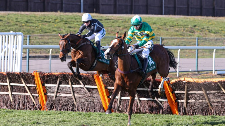 Camprond (in front): could be one to follow after Aintree defeat