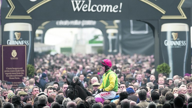 Sizing Europe and Andrew Lynch return victorious after the 2011 Queen Mother Champion Chase