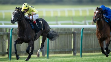 Royal Champion (Andrea Atzeni) wins the 1m Rossdales EBF Stallions Maiden StakesNewmarket 24.9.20 Pic: Edward Whitaker/Racing Post