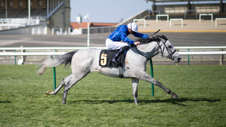 Highland Avenue: one of two runners for Charlie Appleby