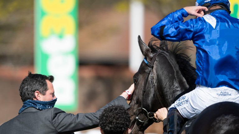 Charlie Hills greets Mutasaabeq after the colt had maintained his unbeaten record in the 7f conditions stakes
