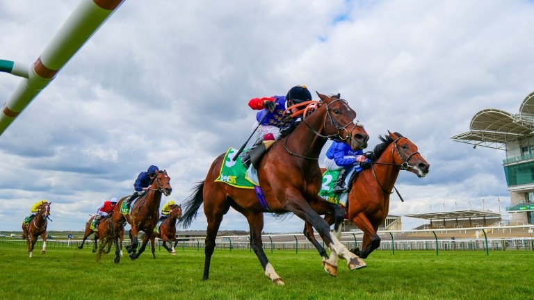 Tactical (near): stayed on best to win the European Free Handicap