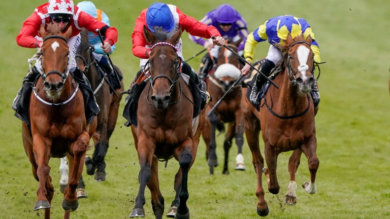 Sacred (centre) clears away from Saffron Beach (left) at Newmarket