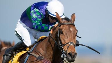 Thyme Hill: impressive winner at Aintree on Saturday