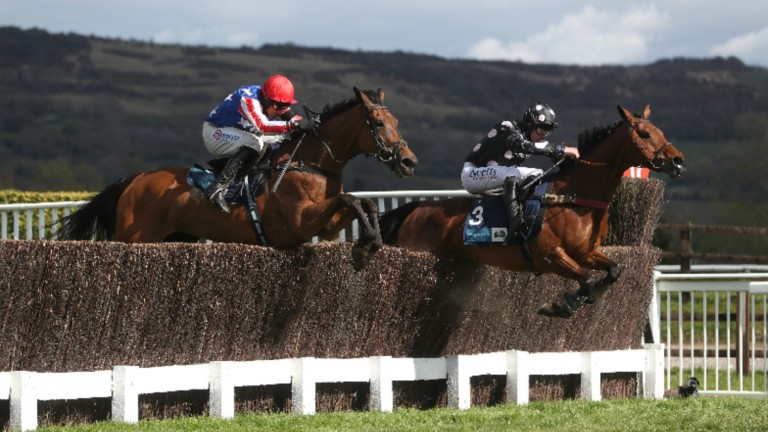 Pink Legend and Charlie Deutch (right) lead them home at Cheltenham