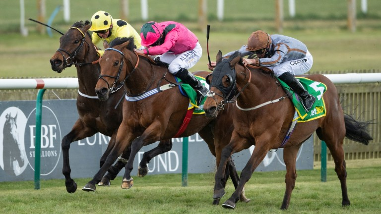 Summerghand (right), Oxted (centre) and Emaraaty Ana clash at Newmarket