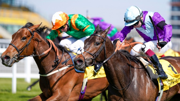 Alcohol Free (purple silks): winner of the Fred Darling Stakes