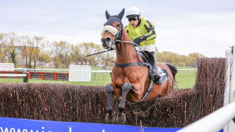 Allmankind was the most popular points scorer in the Tote Ten To Follow competition last week thanks to his victory at Ayr
