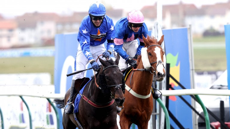 Mighty Thunder (Tom Scudamore) takes the Scottish National from Dingo Dollar