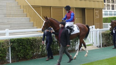 In Swoop and Ronan Thomas head out for the Prix Lord Seymour at Longchamp