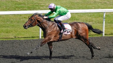 Uncle Bryn wins on his debut at Kempton last September