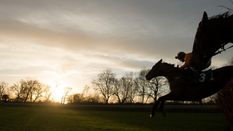 The winner Free World (Lorna Brooke) leads over the 6th last fence in the 2m 4f handicap chase Warwick 31.12.13 Pic: Edward Whitaker