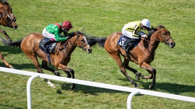 Save A Forest (Callum Shepherd) beats Invite (Oisin Murphy) in the 1m 2f fillies handicapWindsor 19.4.21 Pic: Edward Whitaker/ Racing Post