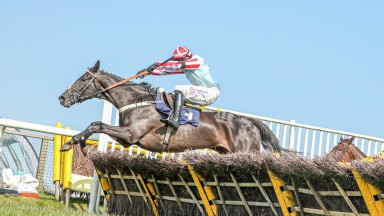 DRAGON BONES (Harry Skelton) wins at HEXHAM 19/4/21Photograph by Grossick Racing Photography 0771 046 1723