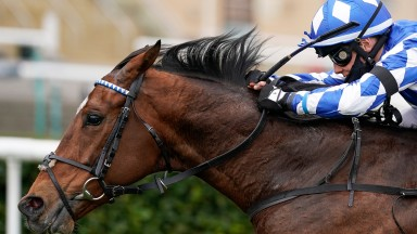 Born to ride: Benoit de la Sayette steers Haqeeqy to success in the Unibet Lincoln last month