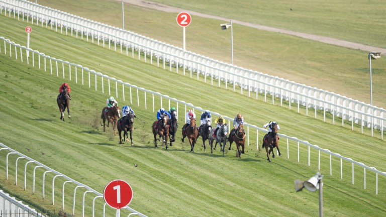Victory Chime (right) wins the City and Suburban Handicap at Epsom in April