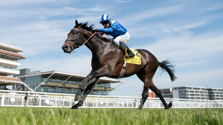 Al Aasy: odds-on favourite for the Coronation Cup after impressive Newbury successes