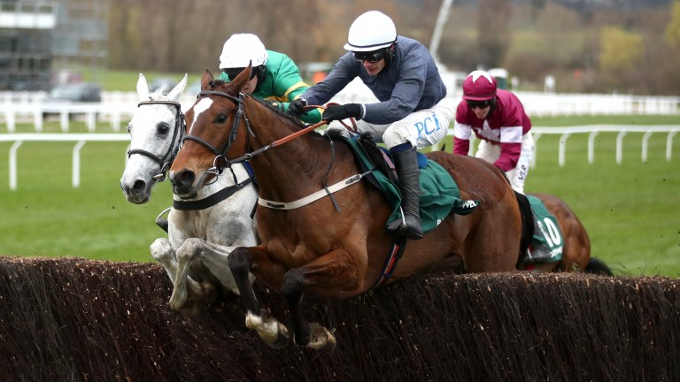 Colreevy (near side): denied stablemate Elimay at the Cheltenham Festival last month