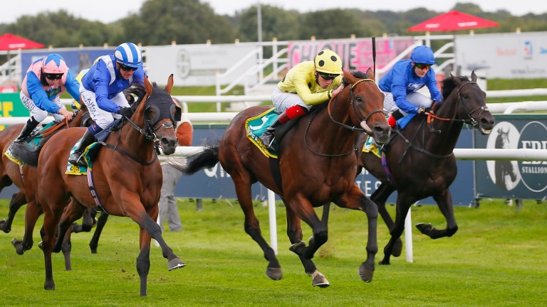 Apparate (yellow) lands the Mallard Stakes, one of the major handicaps at Doncaster's St Leger festival in line for an increase in prize-money