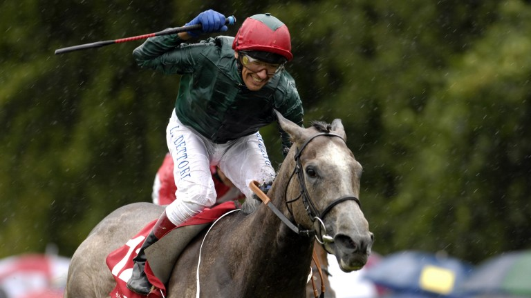 Nahoodh: Falmouth Stakes winner and dam of Great News