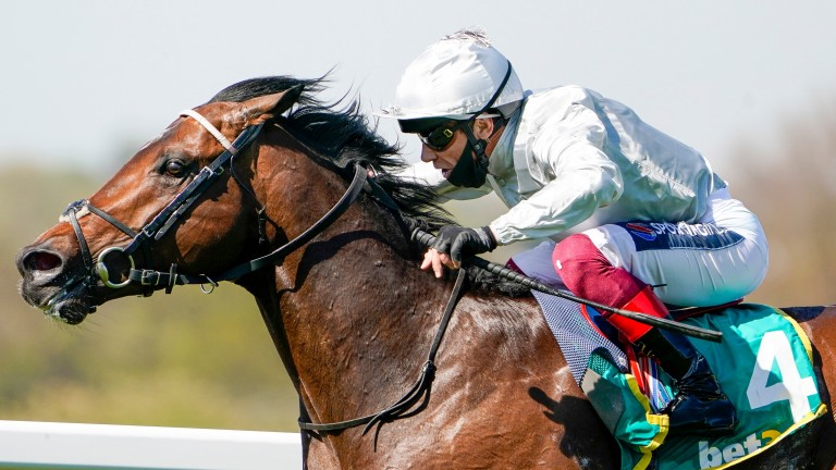 Palace Pier: has entries in the Queen Elizabeth II and Champion Stakes