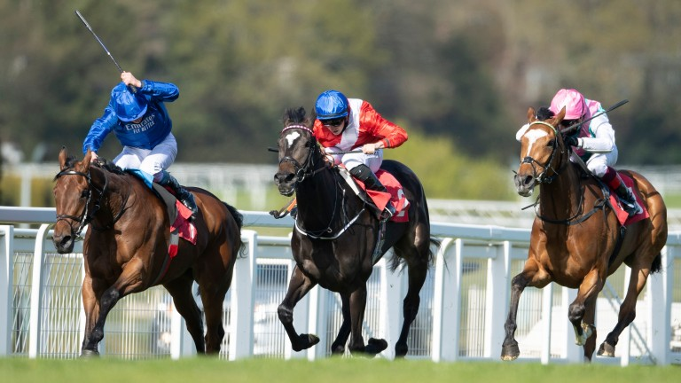 Nash Nasha (left): the daughter of Dubawi and Just The Judge takes the fillies' novice contest from Breccia and Chiasma, a full-sister to Frankel