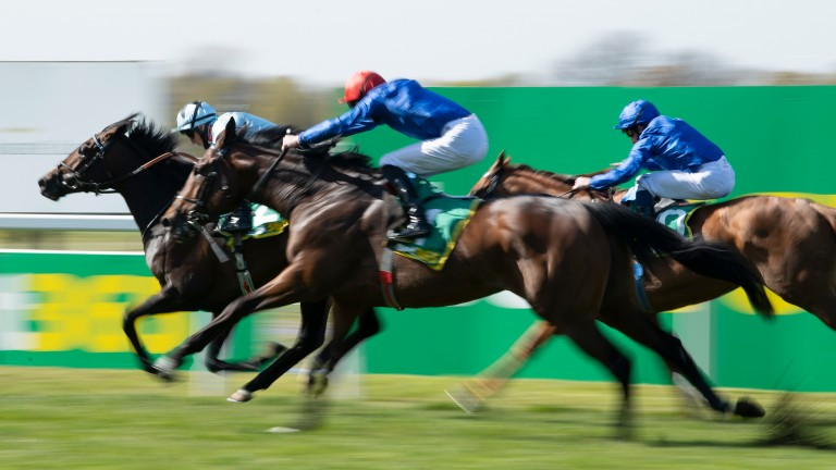 Adayar (red cap) charges at Alenquer late at Sandown