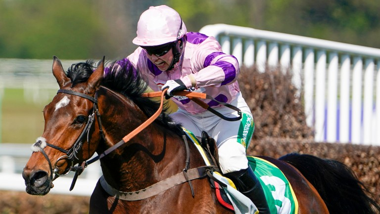 Bryony Frost willing on Greaneteen in the final stages of the Celebration