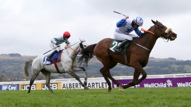 Belfast Banter and Kevin Sexton hold off Petit Mouchoir to win the County Hurdle at Cheltenham