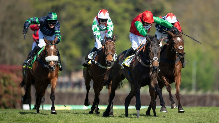Enrilo (second right) was demoted to third in the stewards' room, with Potterman (white and green) winning the race after Paul Nicholls' horse had hampered the third, Kitty's Light (right)