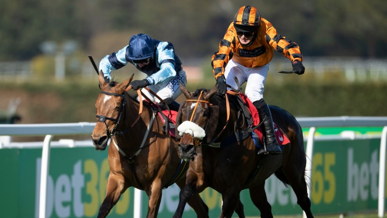 Younevercall (right) digs deep to fend off Indefatigable in the bet365 Select Hurdle