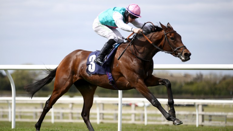 Noon Star: impeccably bred filly is a fascinating contender for the Musidora Stakes