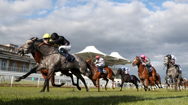 Bath: racing was abandoned before the last on Saturday