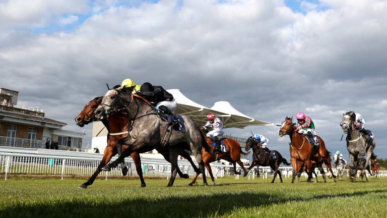 Declaring Love (grey) wins the Listed Lansdown Stakes at Bath