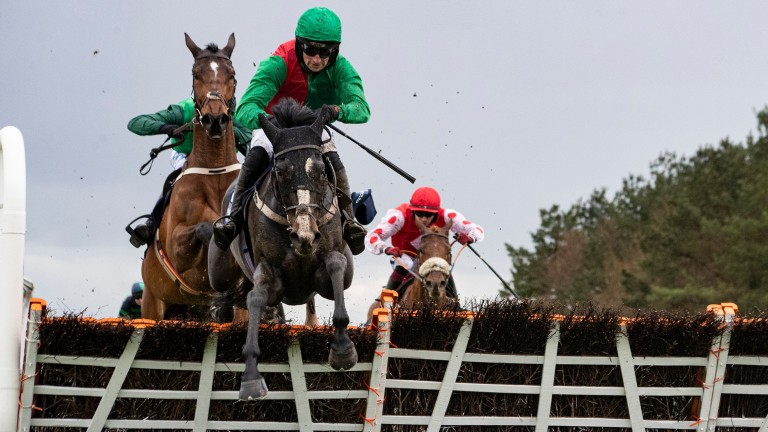 Echoes In Rain: another top-level hurdles winner for Authorized