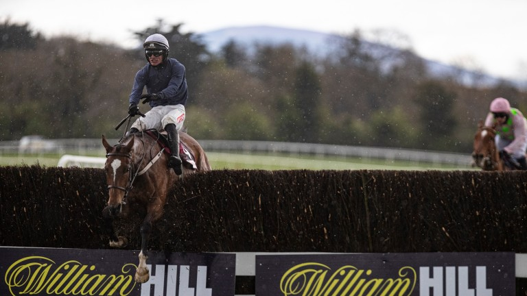 Colreevy and Danny Mullins clear the last in the Grade 1 Champion Novice Chase