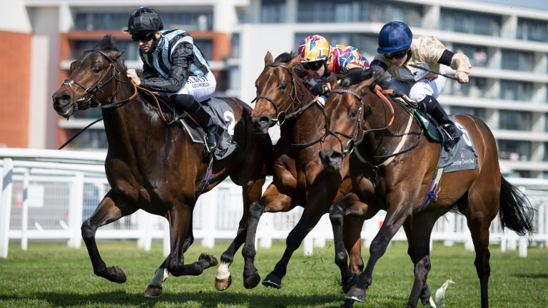 Chindit (left) wins his trial in the Greenham at Newbury