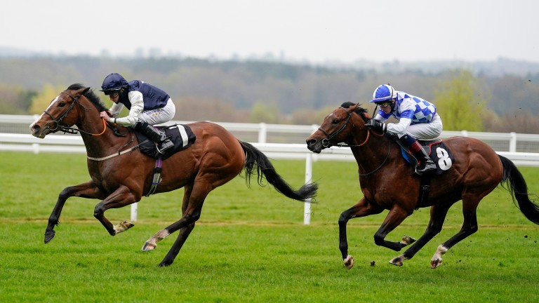 Rohaan finishes fast and late to win the Group 3 Pavilion Stakes