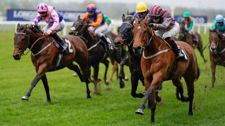 Pettochside storms to victory on his 102nd start