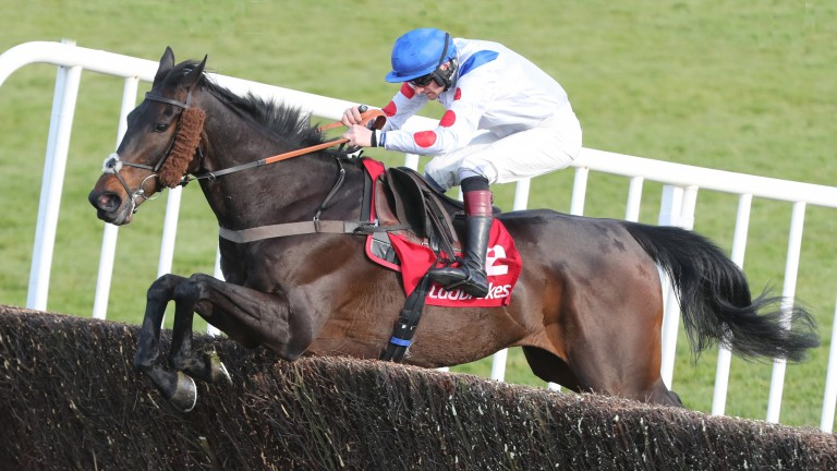 A near footperfect performance from Clan Des Obeaux at Punchestown
