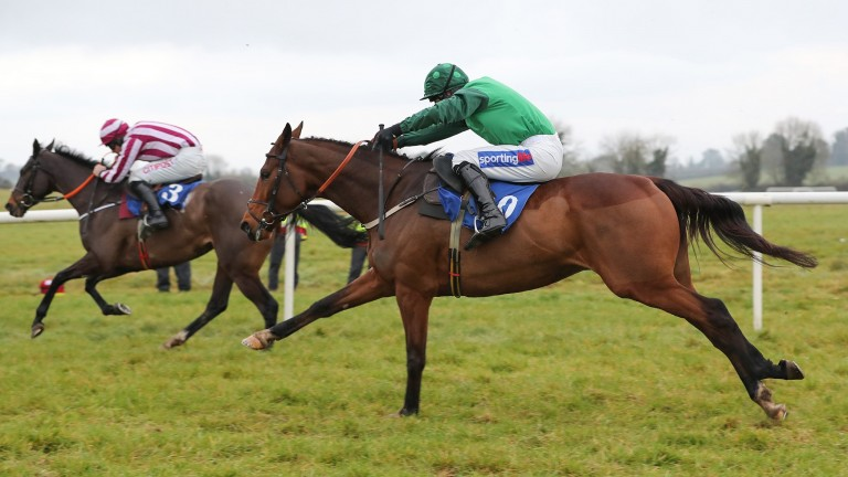 Fan De Blues: won the feature novice chase at Galway on Thursday