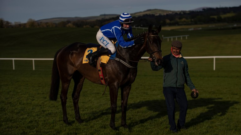 A pat from Paul Townend for Energumene following their bloodless success