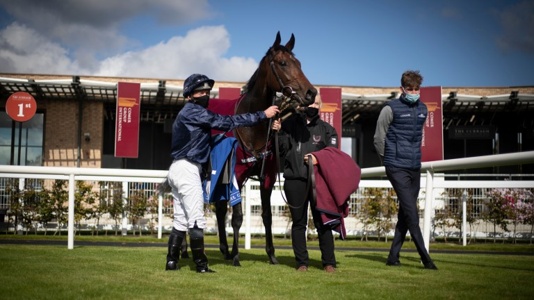 Santa Barbara: 1,000 Guineas favourite is a daughter of Camelot and out of the Danehill mare Senta's Dream, dam of Order Of Australia and Iridessa